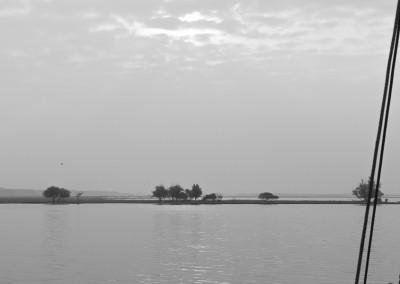 landschap0001