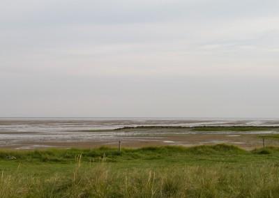 landschap0016